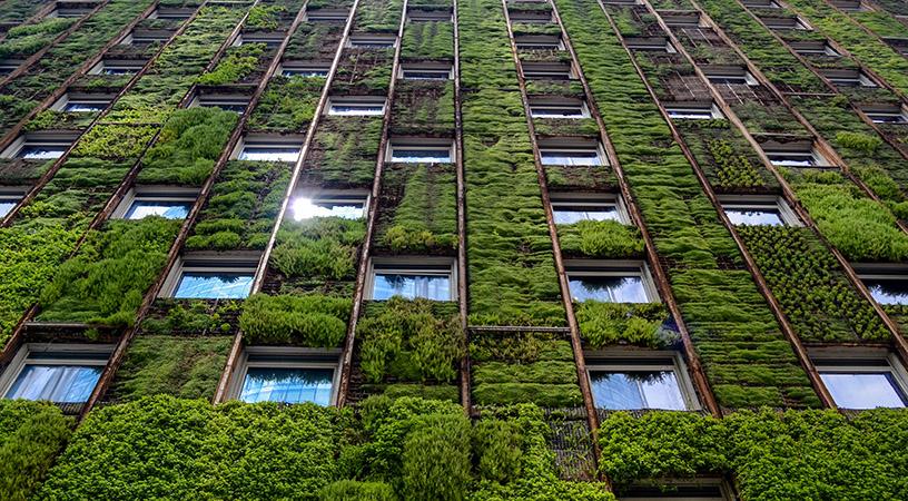 ESG: Sustentabilidade na área de tecnologia